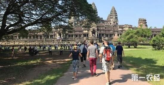 中国游客推动了柬埔寨旅游业的迅速发展,吴哥窟游客大都是中国人.