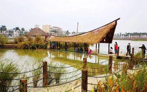 桂林洋国家热带农业公园新年人气火爆热闹非凡