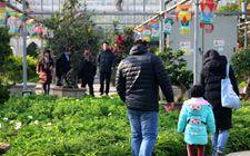 <b>天津:智能农业建设显效益 促进农业升级转型助农增收</b>