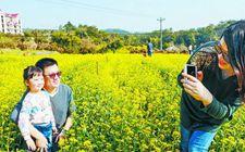 厦门同安重视发展和完善休闲农业和乡村旅游