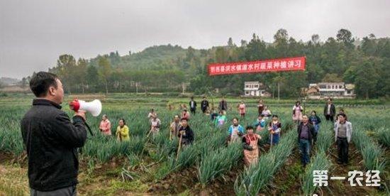 贵州毕节土语土话讲习