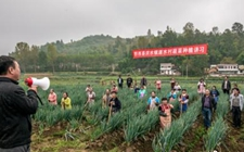 <b>贵州兴办土话土语讲习所 农民靠知识脱贫增本领</b>