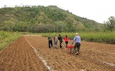 宁夏各地农民进入备耕状态 春耕生产工作已陆续展开