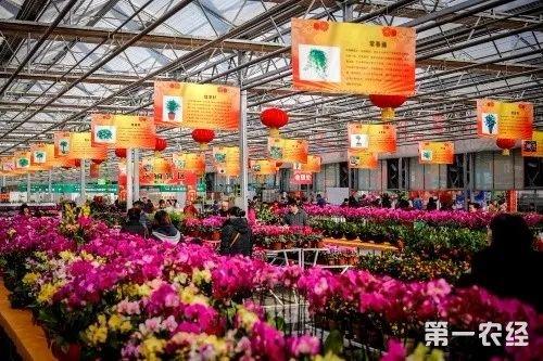 第九届吉林冬季农业博览会闭幕  共计吸引44万人次参观