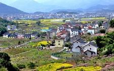 乡村文化振兴的意义与中国路径探索
