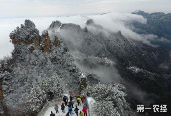 2月22日湖南张家界武陵源天子山风景区春雪降临