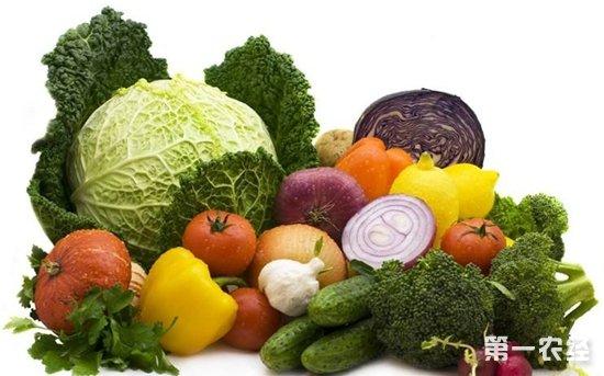 深圳节后加大供应量 蔬菜价格很快将回落