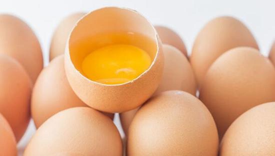 占据法国7成市场笼养鸡蛋将在2022年后禁止销售