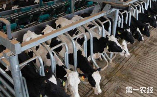 河南省全面部署2018年畜牧重点工作  推进畜牧业生态建设