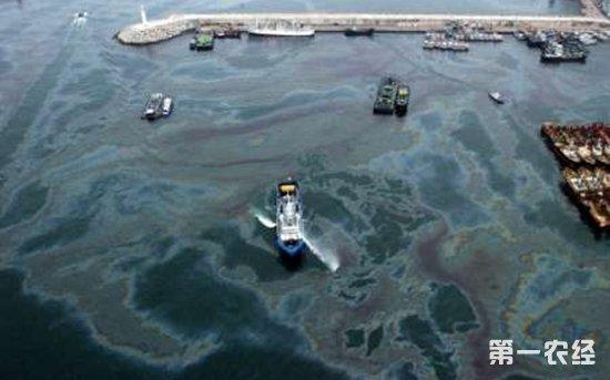 渔业政策:《船舶水污染物排放控制标准》7月1日起实施
