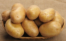 从土豆之变看产业富民路径
