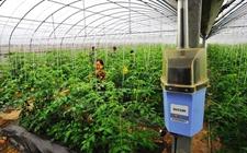 黑龙江:建立农业物联网大数据体系 助力智慧农业发展