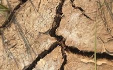 四川九支镇:春耕生产在即 水田却严重缺水