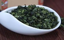 茶叶常识:说说安溪铁观音的妙用