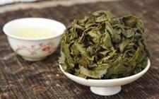 铁观音与武夷岩茶有什么区别?铁观音与武夷岩茶的区别