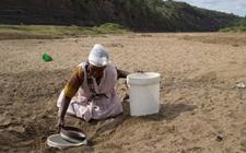 南非部分地区干旱致断水 将失去5万个农业季节性岗位