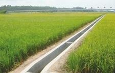 浙江临安5000亩农田即将进入春播灌溉期