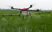 <b>南宁:农业科技助推武鸣特色农业发展 助力现代农业快速发展</b>