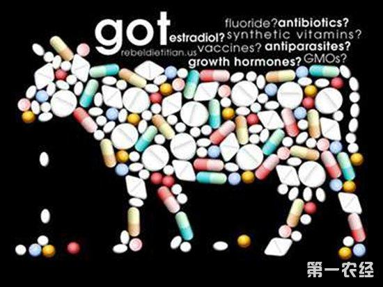 新型饲用抗生素替代品创制获科技奖  助力解决动物病原菌感染等问题