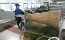 刘文新代表:加强茶区农业投入品监管