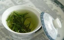 井岗翠绿是什么茶?关于井岗翠绿茶介绍