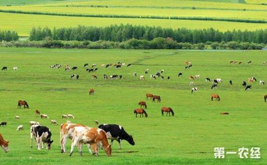 【两会声音】有效利用农畜牧业废弃物  促进农畜牧业生态循环模式发展