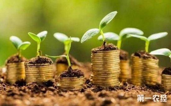 农业银行高度重视绿色金融发展  贡献金融力量惠及乡村村民