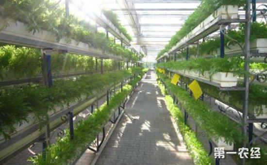 浙江武义:进一步深化科技特派员工作  支撑农业科技服务