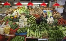 洪都拉斯出口量设法增加近4.5% 占据中美洲蔬菜出口主要市场