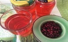 五味子茶的功效与作用有哪些?五味子茶的功效与作用