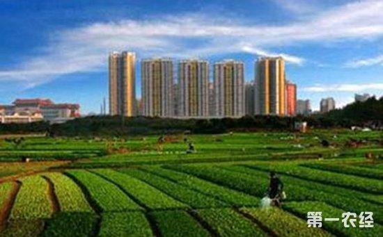 广东:全面盘活农村闲置建设用地  促农增收助力乡村振兴