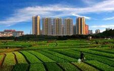 <b>广东:全面盘活农村闲置建设用地 促农增收助力乡村振兴</b>