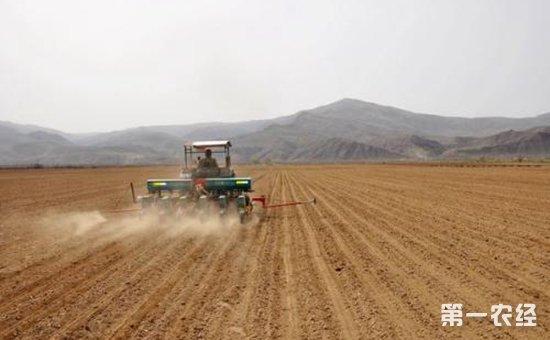 新疆:保障春耕备耕资金的贷款需求  增强农村发展的活力