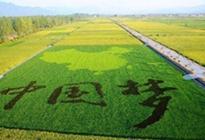 三部门联合推动农业产业化联合体政策创新加快发展