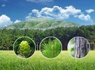 做好做强农产品品牌 推动农业高质量发展