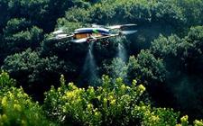<b>浙江金华:林业有害生物防控工作成效明显 无公害防治率达到99.8%</b>
