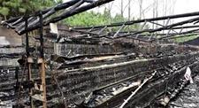 丧子老夫妻养鸡场被雷击后起火五千只鸡付之一炬