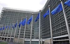 <b>欧盟:不批准福美双杀菌剂续展登记 现有相关农药产品将推出市场</b>