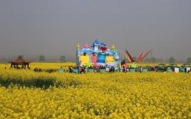 <b>常德鼎城第五届油菜花节展暨农博会顺利举行</b>