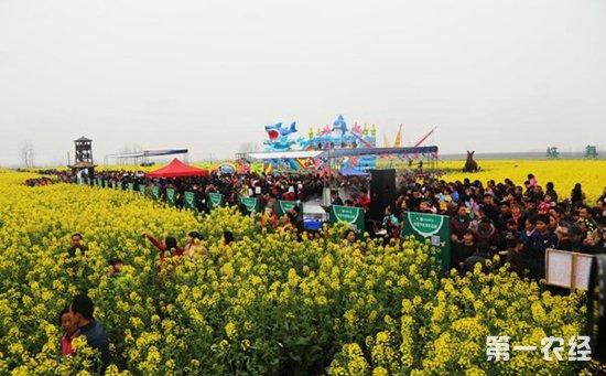 常德鼎城第五届油菜花节展暨农博会顺利举行