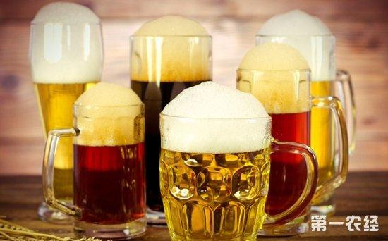 啤酒是酸性的还是碱性的?啤酒的ph值范围是多少?