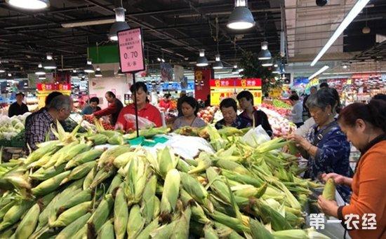 东风近10万亩滞销甜玉米迎来转机  海口家乐福爱心采购助农户渡难关