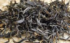什么是纯料茶?纯料茶和拼配茶哪个好?