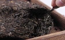 普洱茶与沱茶有什么区别?普洱茶与沱茶的区别