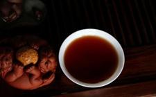 普洱茶为什么会不耐泡?影响普洱茶耐泡性的5大因素