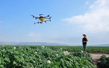 <b>广西:搭建农业科技交流平台 充分利用面向东盟国家的地缘优势</b>