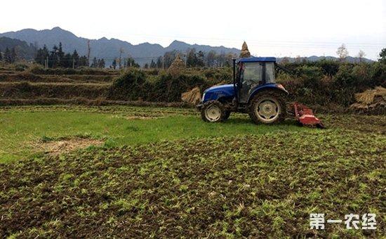 黑龙江望奎:扎实做好春耕农资准备  保障农资市场长效稳定