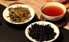 影响普洱茶品质的因素中,原料比工艺更重要吗?