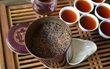 """普洱茶仓味是怎么样的?什么样的普洱茶需要进""""仓""""?"""