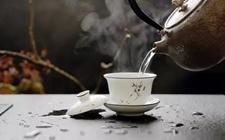 """新茶都需要""""醒茶""""?如何醒茶?"""